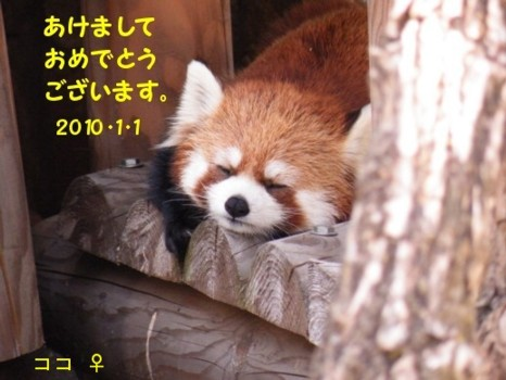 Maruyama09507_005_2