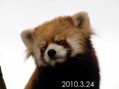 2010_0324_161056dscf5721