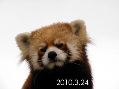 2010_0324_161056dscf5723