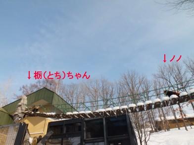 20120309_511