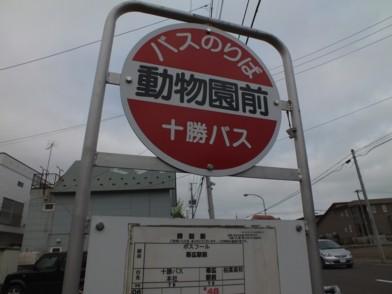 201263_obihiro_446